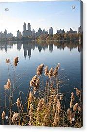 Central Park Acrylic Print by Yannick Guerin