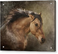 Chase The Wind Acrylic Print by Ron  McGinnis
