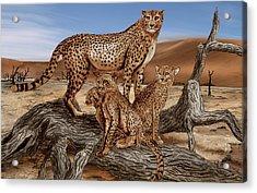 Cheetah Family Tree Acrylic Print by Peter Piatt