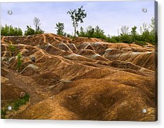 Cheltenham Badlands In Caledon Acrylic Print by Panoramic Images