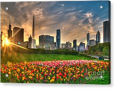 Chicago Spring Acrylic Print by Jeff Lewis