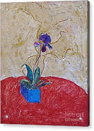 Christmas Orchid Acrylic Print by James SheppardIII