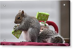 Christmas Squirrel Acrylic Print