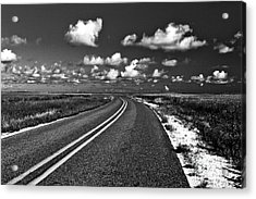 Cocodrie Highway Acrylic Print by Scott Pellegrin