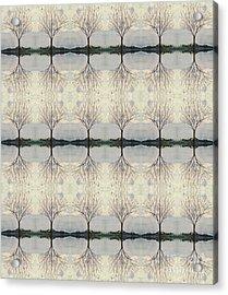 Colorado Cottonwood Tree Mirror Image  Acrylic Print
