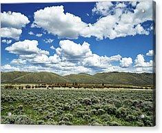Colorado Vista Acrylic Print by L O C