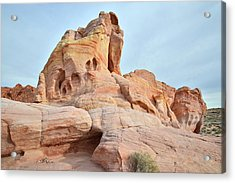 Acrylic Print featuring the photograph Colored Castle In Valley Of Fire by Ray Mathis