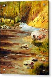 Cool Mountain Stream Acrylic Print by Phil Burton