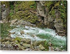 Coqhuihalla River, Bc, Canada Acrylic Print by Patricia Hofmeester