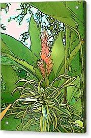 Costa Rica Jungle Bloom Acrylic Print by Lisa Dunn