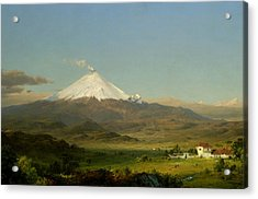 Cotopaxi Acrylic Print by Frederic Edwin Church