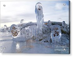 Covered In Ice Acrylic Print by Sandra Updyke