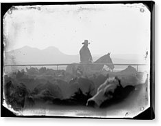 Cowboy Dawn Acrylic Print by Todd Klassy
