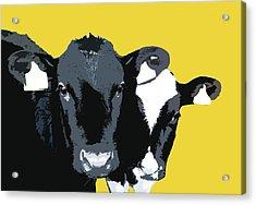 Cows - Yellow Acrylic Print