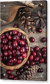 Cranberries In Basket Acrylic Print by Elena Elisseeva