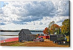 Cranberry Farming Acrylic Print by Gina Cormier