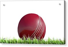 Cricket Ball Resting On Grass Acrylic Print by Allan Swart