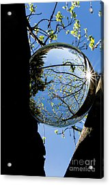 Crystal Reflection Acrylic Print