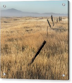 Cuyamaca Fenceline Acrylic Print by Joseph Smith