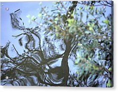 Dancing Leaves Acrylic Print