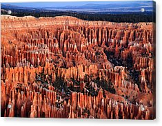 Dawn In Bryce Canyon Acrylic Print by Pierre Leclerc Photography