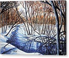 Deep Woods Wisconsin Acrylic Print