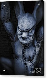 Demon Acrylic Print by HD Connelly