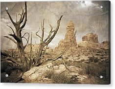 Acrylic Print featuring the photograph Desert Tree by Mike Irwin