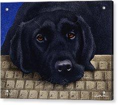 Dog Byte... Acrylic Print
