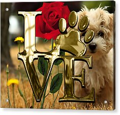 Dog Lover Collection  Acrylic Print by Marvin Blaine