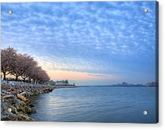 Down River Acrylic Print by JC Findley