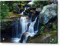 Down Stream Acrylic Print