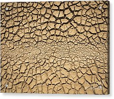 Dried And Cracked Soil In Arid Season. Acrylic Print by Tosporn Preede
