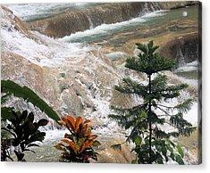 Dunns River Falls Acrylic Print by Rosalie Scanlon