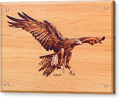 Acrylic Print featuring the pyrography Eagle by Ron Haist