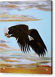 Eagle Stealth Acrylic Print by Adele Moscaritolo