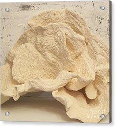 Ear Coral Acrylic Print