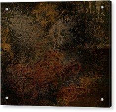 Earth Texture 2 Acrylic Print