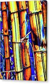 Electric Bamboo 1 Acrylic Print