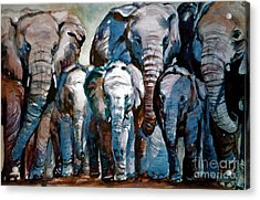 Elephant Family Acrylic Print by Joyce A Guariglia