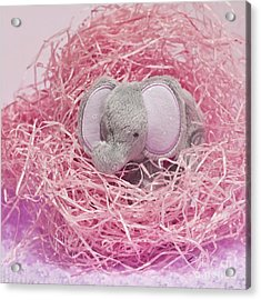 Elephant For Charity Pink Acrylic Print