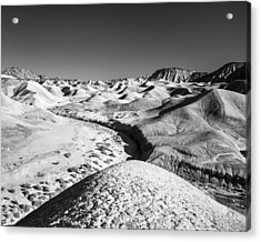 Acrylic Print featuring the photograph Elephant Knees And Mud Hills by Alexander Kunz