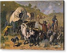 Emigrants To West, 19th C Acrylic Print