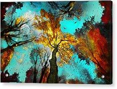 Evening Celebration Acrylic Print
