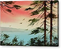 Acrylic Print featuring the painting Evening Light by James Williamson
