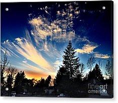 Evening Sky Acrylic Print by Leslie Hunziker