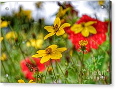 Acrylic Print featuring the photograph Faith by Isabella F Abbie Shores FRSA