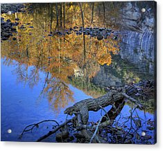 Fall Color At Big Bluff Acrylic Print by Michael Dougherty