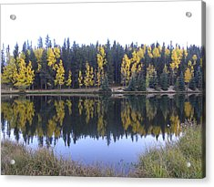 Potty Pond Reflection - Fall Colors Divide Co Acrylic Print