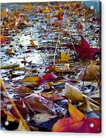Fall Acrylic Print by Jason Leonti
